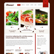 Stomaci by Themeskingdom