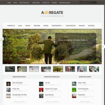 Aggregate by Elegantthemes