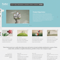 Feather by Elegantthemes