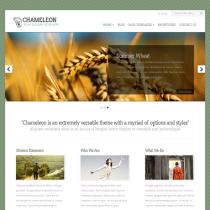 Chameleon by Elegantthemes