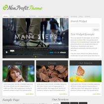 NonProfit by Organicthemes