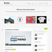 Beveled by Woothemes