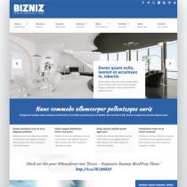 BizNiz by Themeforest
