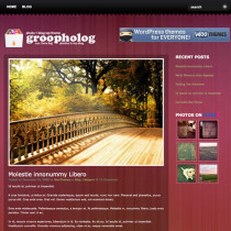 Groovy by Woothemes