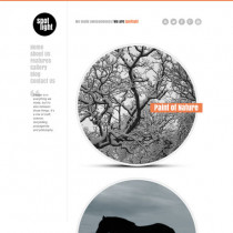 Spotlight by Themeforest