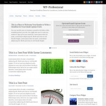 WP-Professional By Solostream