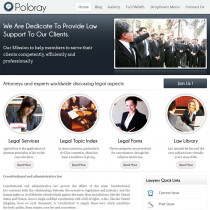 Poloray by InkThemes