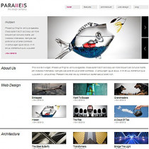 Parallels by Vivathemes