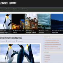 Monochrome by WPCrunchy