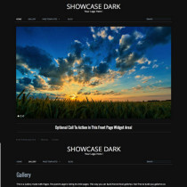 Showcase Dark by RichWP