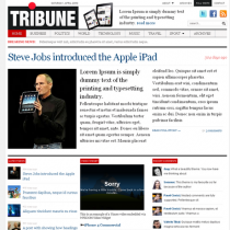 Tribune 3.0 by WPzoom
