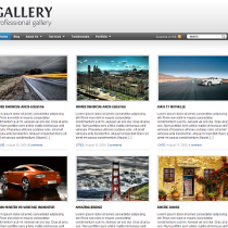 Gallery by WPzoom