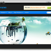 Reviews wordpress themes by Templatic