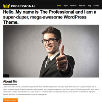 The Professional by ThemeForest