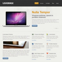 Leverage by ThemeTrust