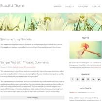 Beautiful Pro by StudioPress